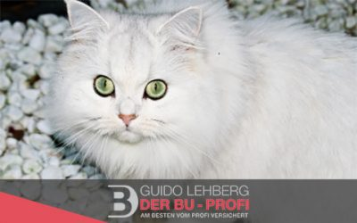 Ist die neue Berufsunfähigkeitsversicherung der Alte Leipziger wirklich die beste BU?